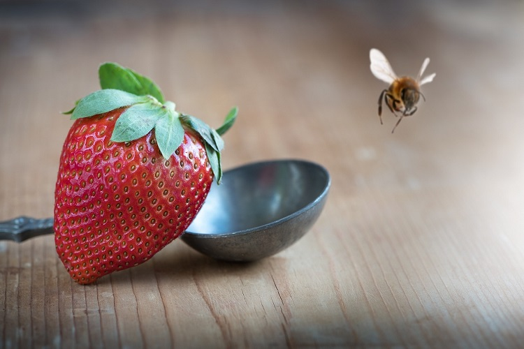 strawberry-1367814_1280