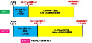 ELEPHANTお得 (1)